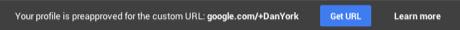 Google custom url 2